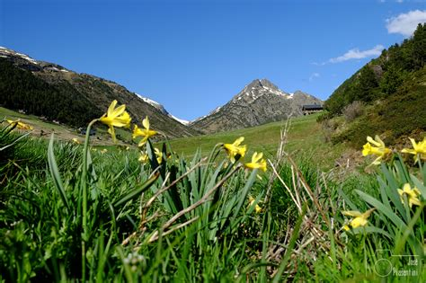 Contrato con La Caixa Andorrana de Seguretat Social